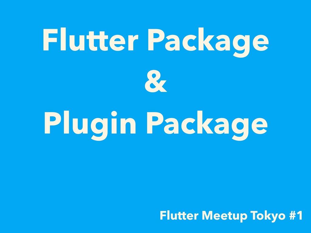 Flutter Package  & Plugin Package Flutter Mee...