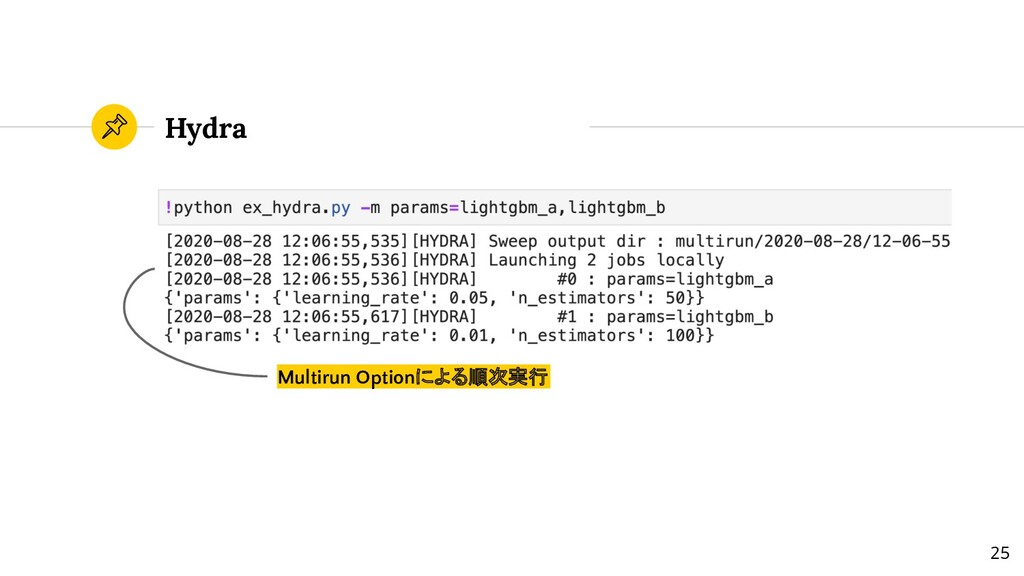 Hydra Multirun Optionによる順次実行 25