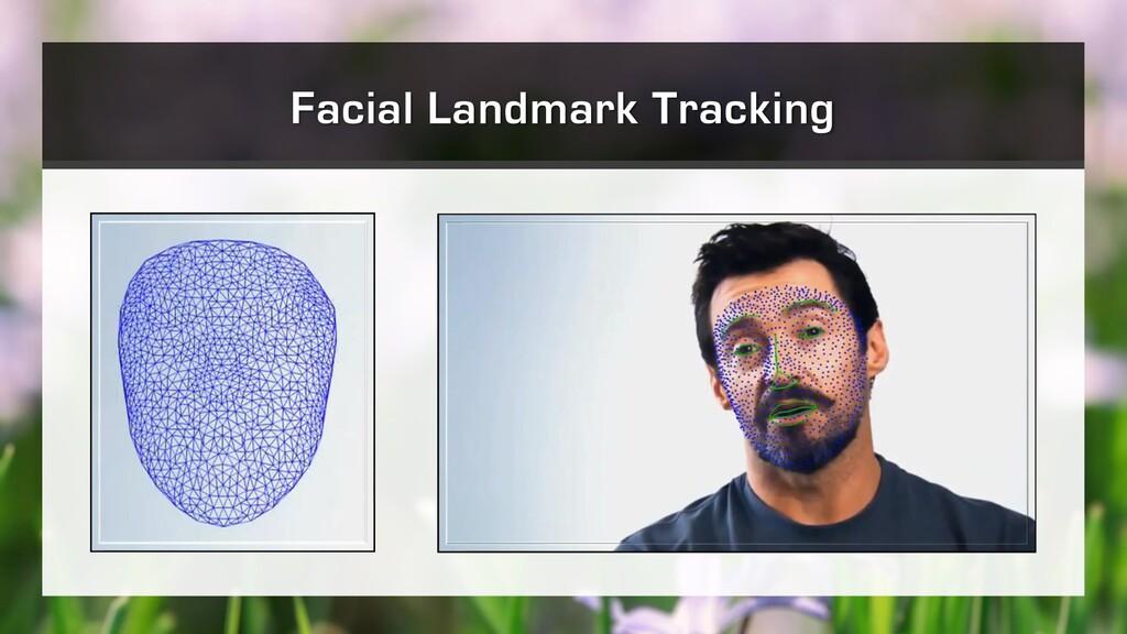 Facial Landmark Tracking