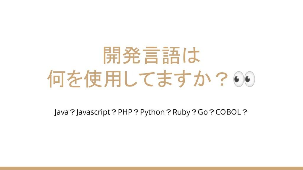 開発言語は 何を使用してますか? Java?Javascript?PHP?Python?Rub...