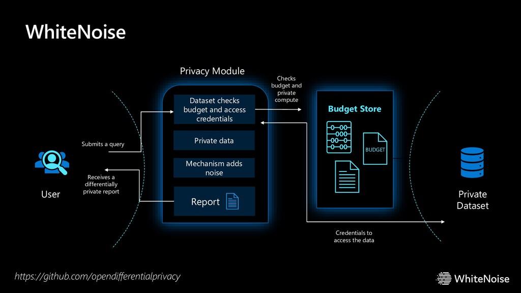 WhiteNoise Privacy Module Report Budget Store B...
