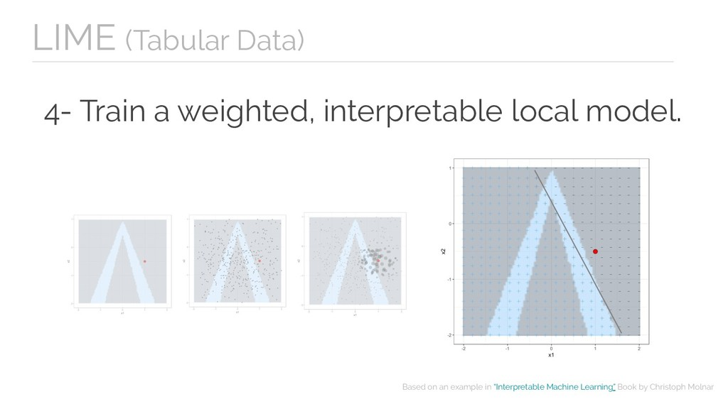4- Train a weighted, interpretable local model....