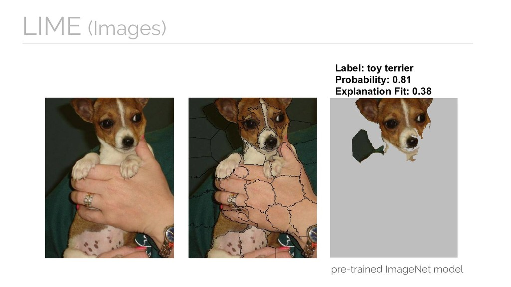 Label: toy terrier Probability: 0.81 Explanatio...