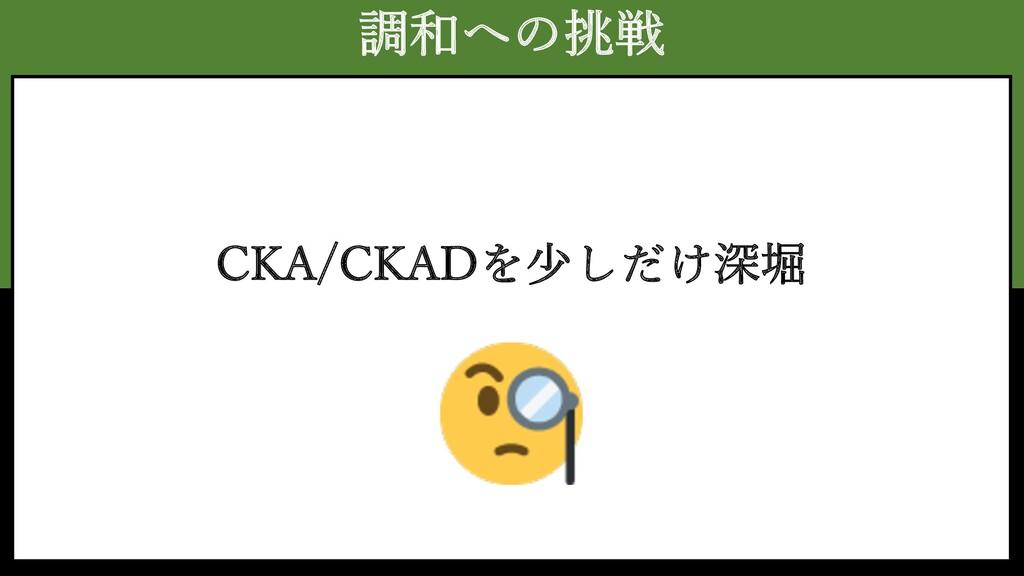 調和への挑戦 CKA/CKADを少しだけ深堀