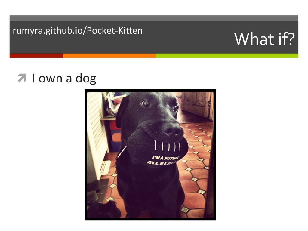 What if?  ì I own a dog  ru...