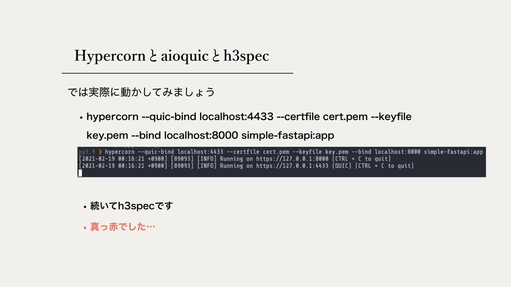 Hypercorn aioquic Ͱ࣮ࡍʹಈ͔ͯ͠Έ·͠ΐ͏ h3spec w IZQFS...