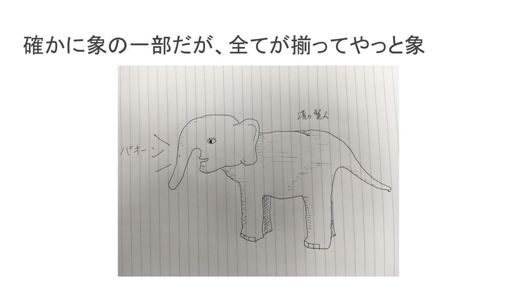 確かに象の一部だが、全てが揃ってやっと象
