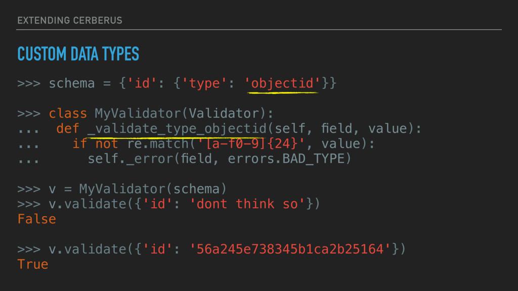 EXTENDING CERBERUS CUSTOM DATA TYPES >>> schema...
