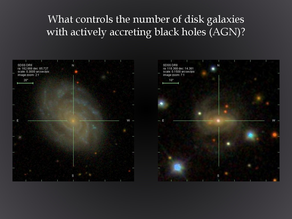 What controls the number of disk galaxies with ...