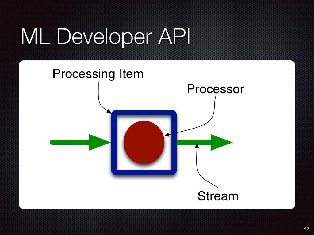 ML Developer API 40 Processing Item Processor S...