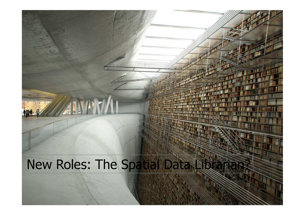 New Roles: The Spatial Data Librarian?