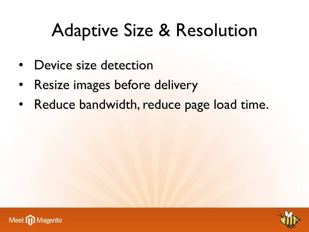 Adaptive Size & Resolution 	 
