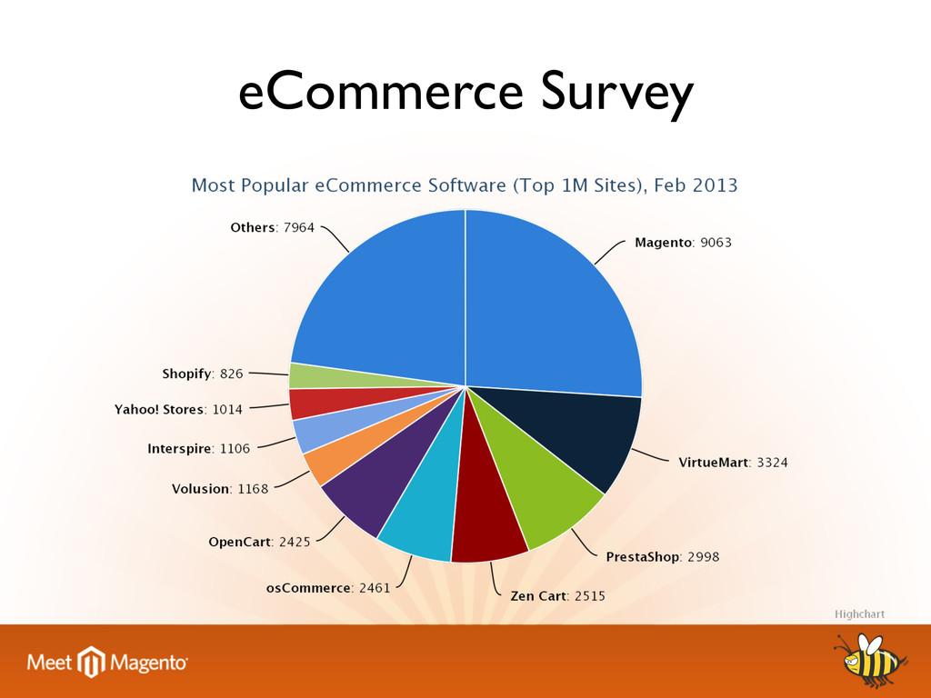 eCommerce Survey