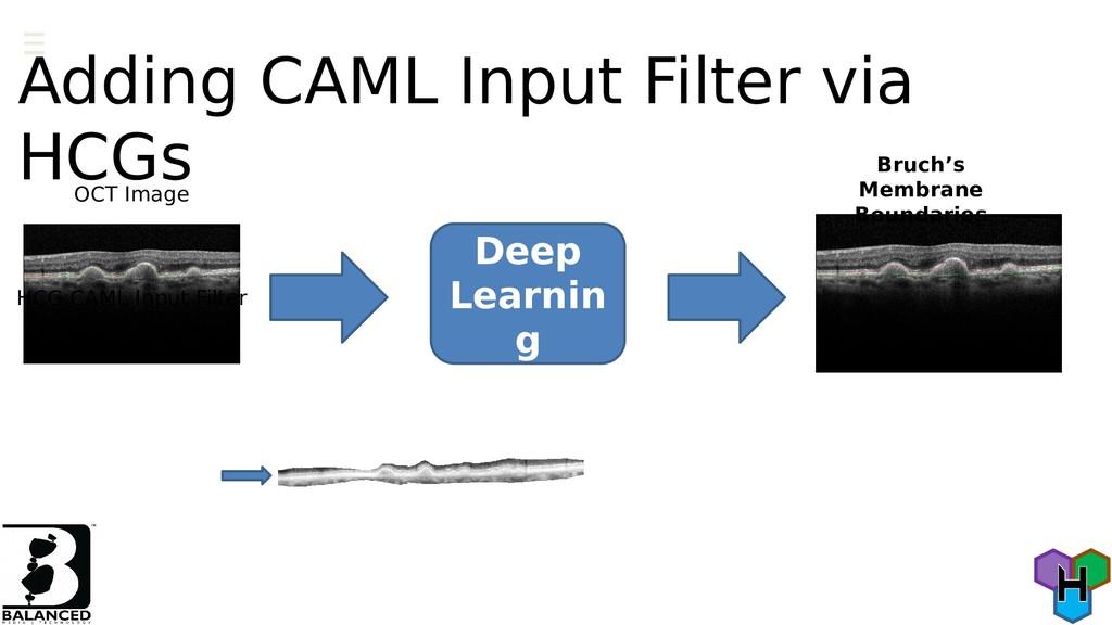 Adding CAML Input Filter via HCGs Deep Learnin ...