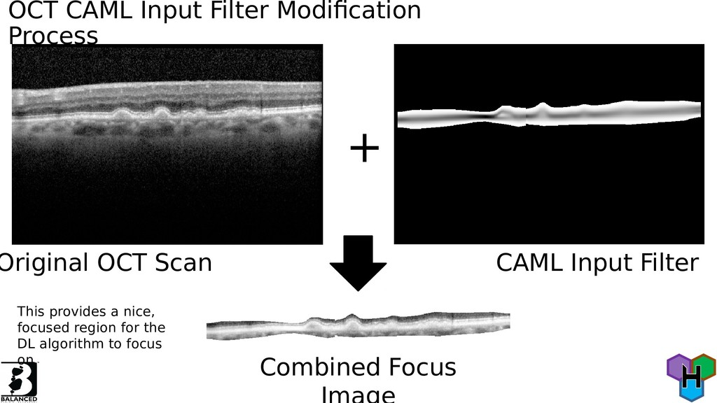 OCT CAML Input Filter Modifcation Process Origi...