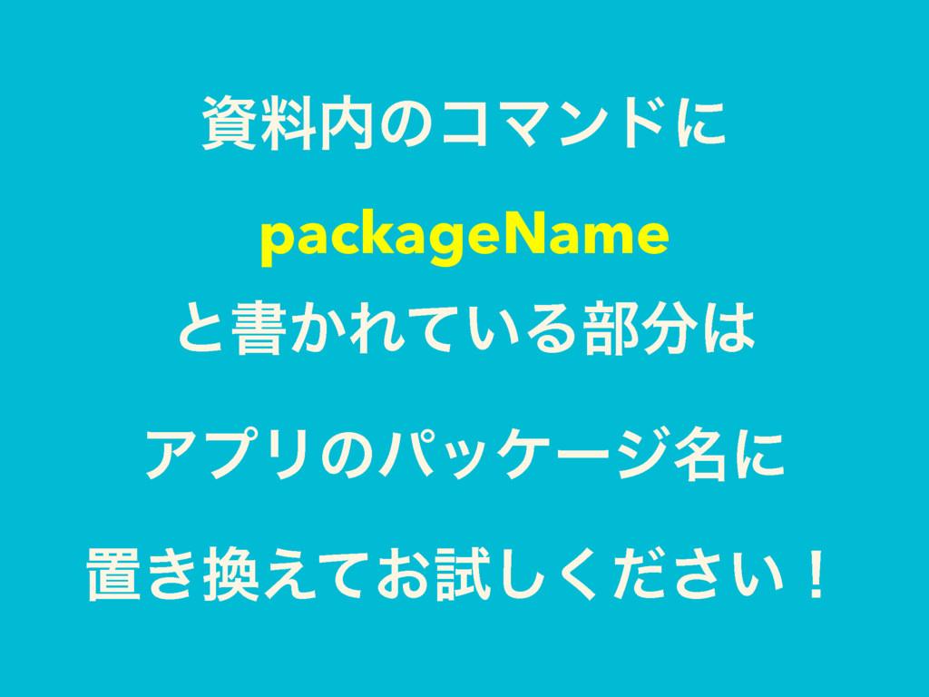 ྉͷίϚϯυʹ packageName ͱॻ͔Ε͍ͯΔ෦ ΞϓϦͷύοέʔδ໊ʹ...