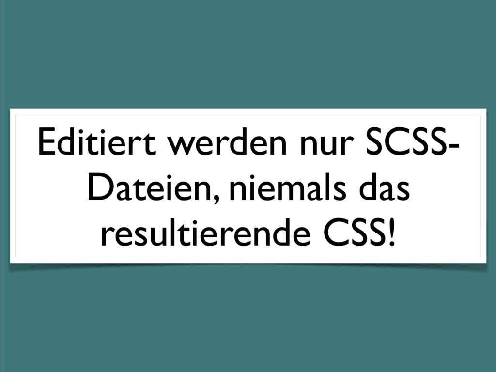 Editiert werden nur SCSS- Dateien, niemals das ...