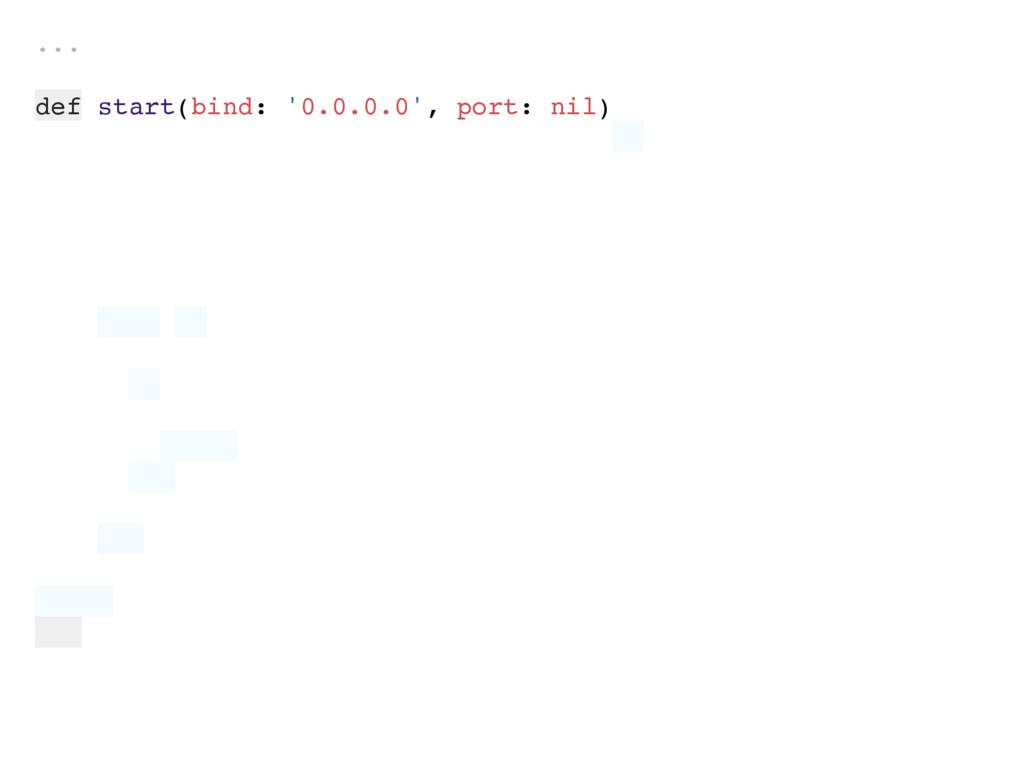 ... def start(bind: '0.0.0.0', port: nil)