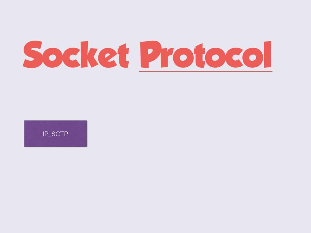 Socket Protocol *1@4$51