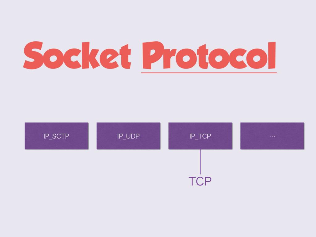 Socket Protocol *1@4$51 *1@6%1 *1@5$1 5$1 ʜ