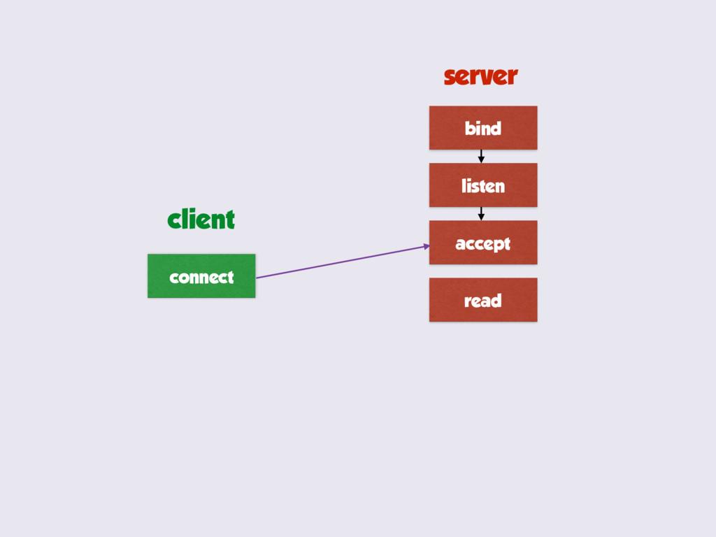 bind listen accept read connect server client