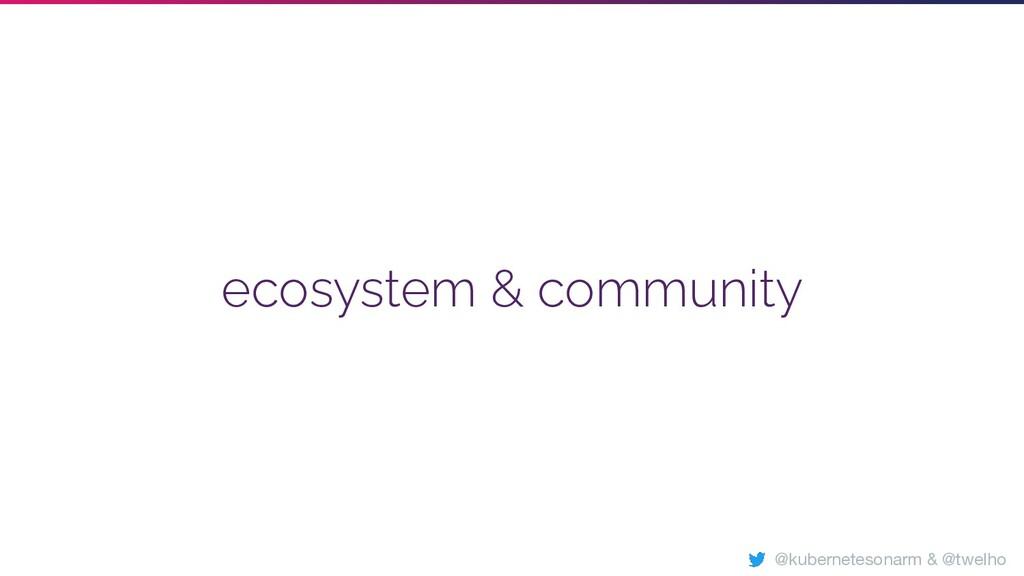 ecosystem & community @kubernetesonarm & @twelho