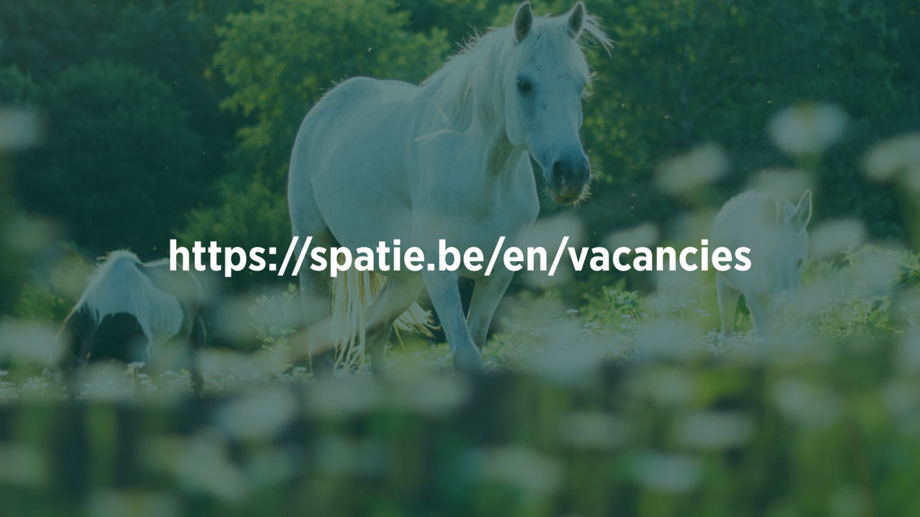 https://spatie.be/en/vacancies