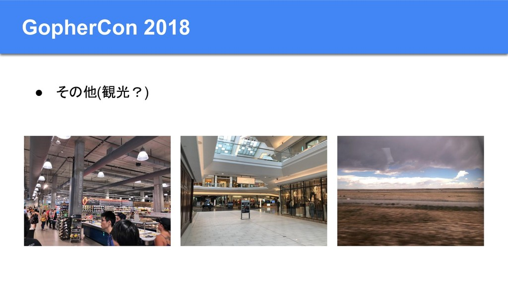 GopherCon 2018 ● その他(観光?)