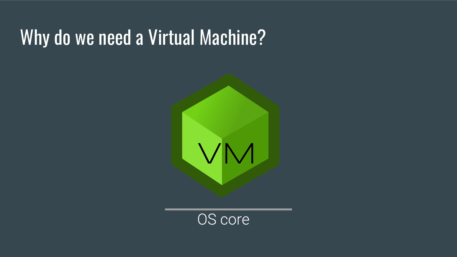 Why do we need a Virtual Machine? VM
