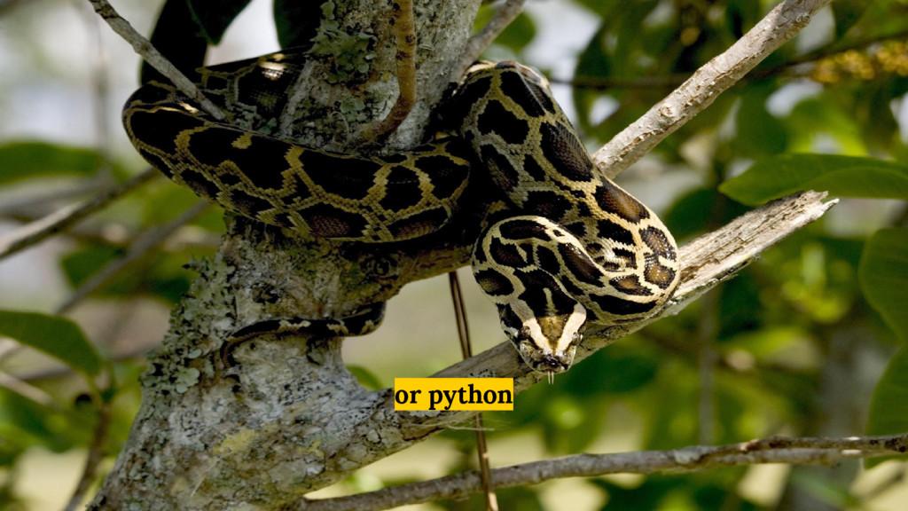 or python