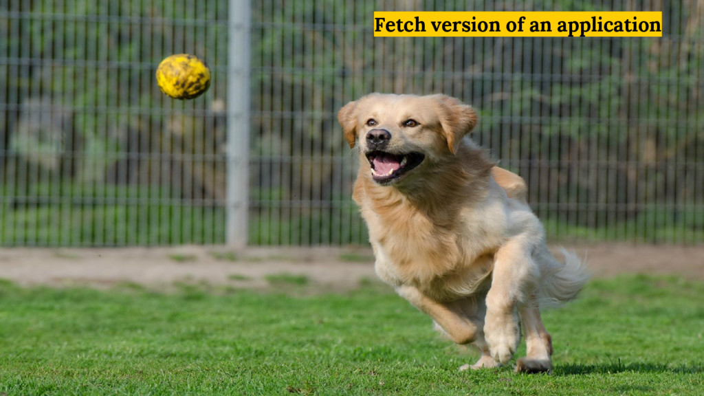 Fetch version of an application
