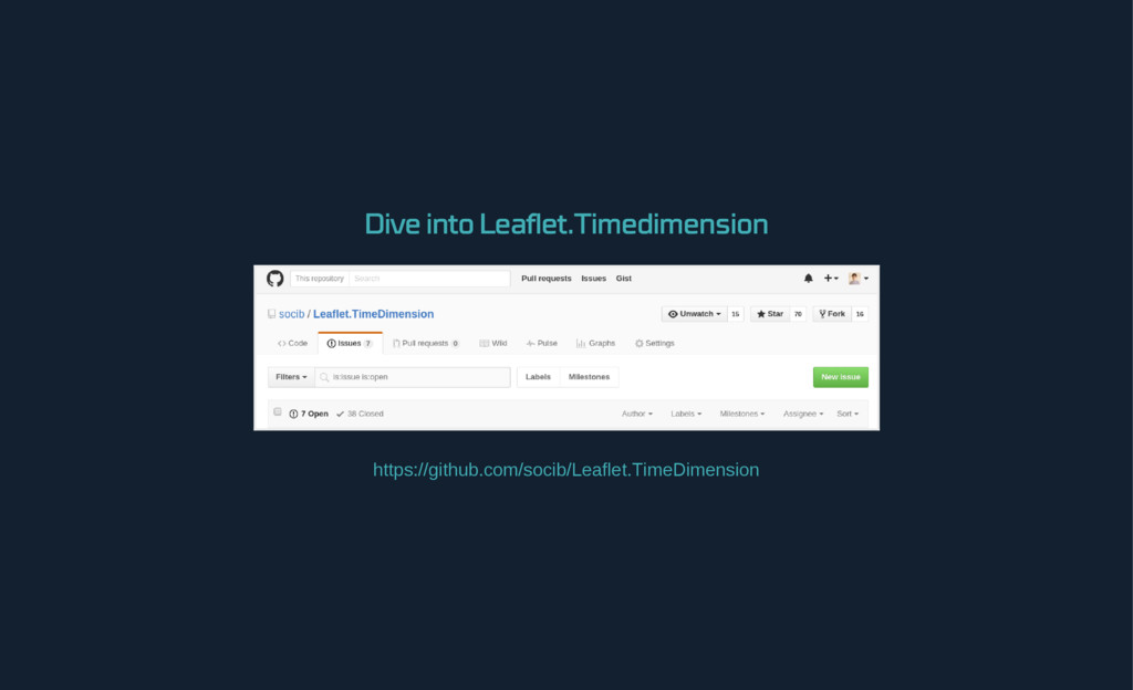 Dive into Leaflet.Timedimension https://github....