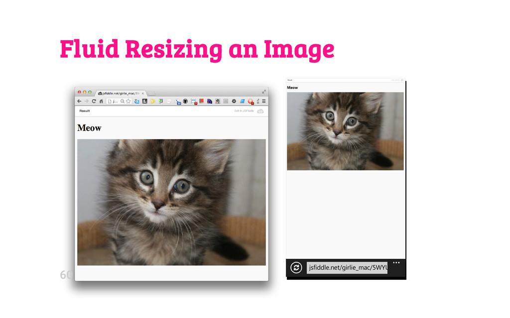 Fluid Resizing an Image 60