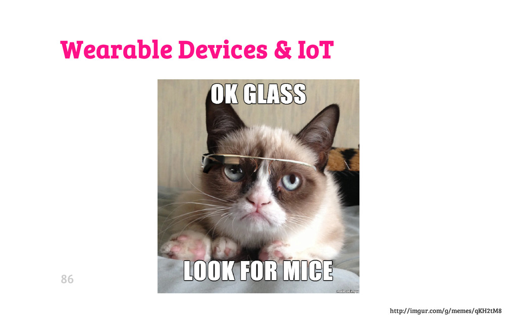 Wearable Devices & IoT http://imgur.com/g/memes...