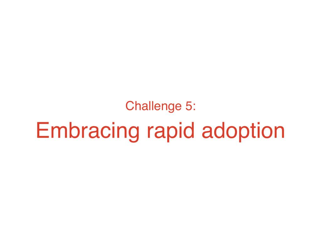 Challenge 5: Embracing rapid adoption