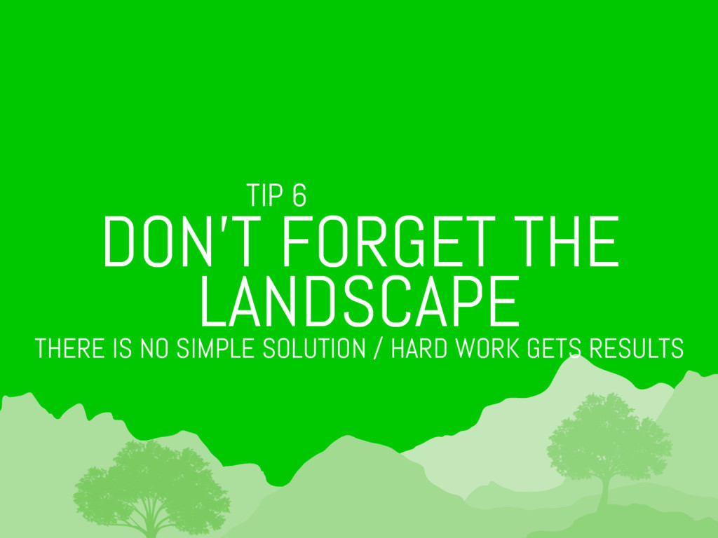 TIP 6 DON'T FORGET THE LANDSCAPE THERE IS NO SI...