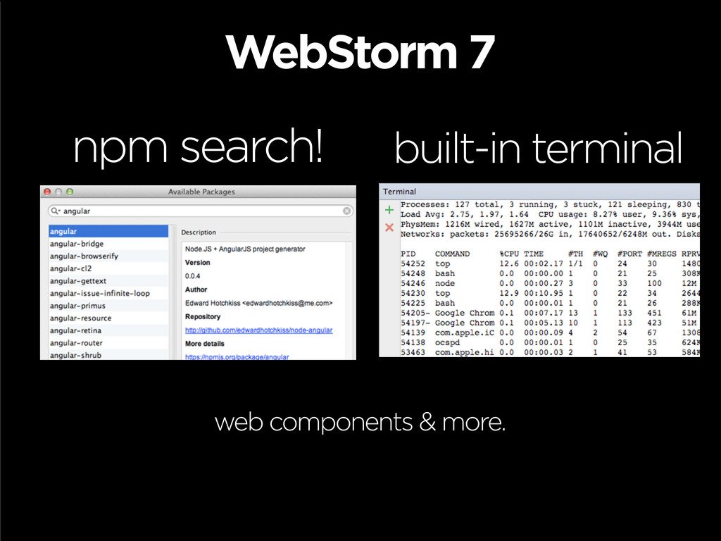 WebStorm 7 npm search! built-in terminal web co...