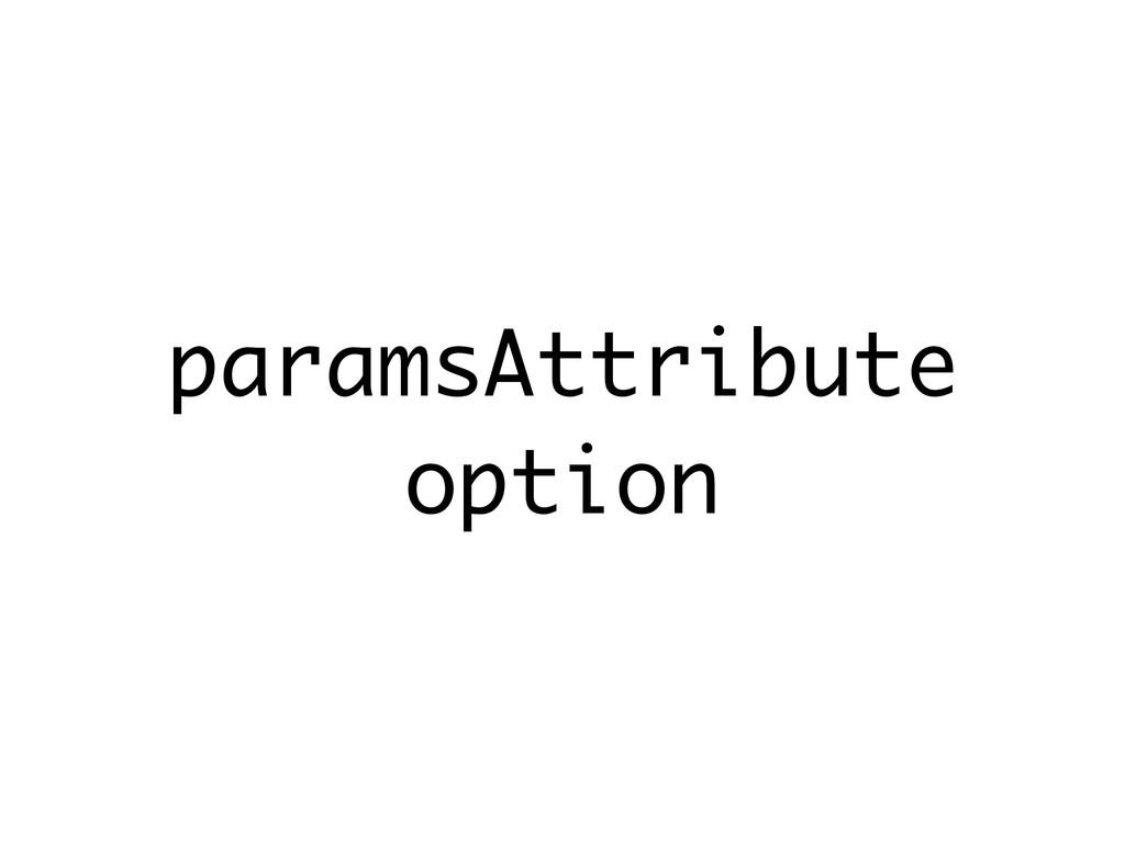 paramsAttribute option