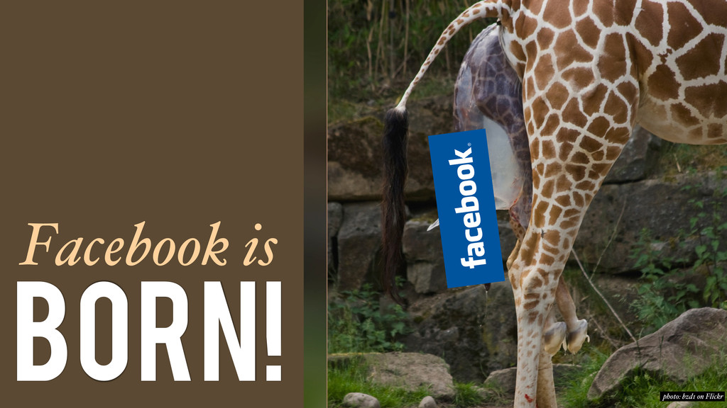 Facebook is Born! photo: bzd1 on Flickr