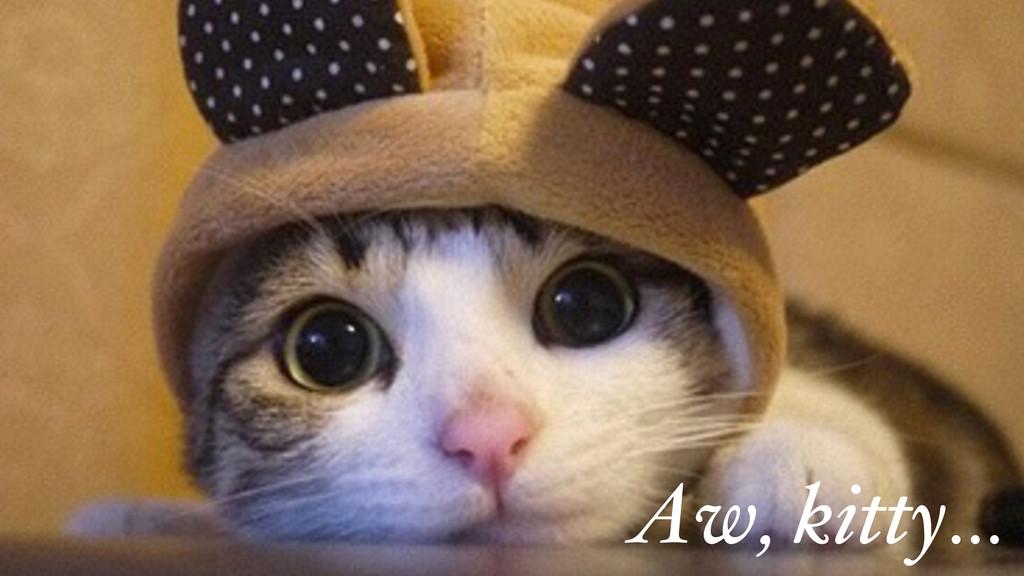 Aw, kitty…