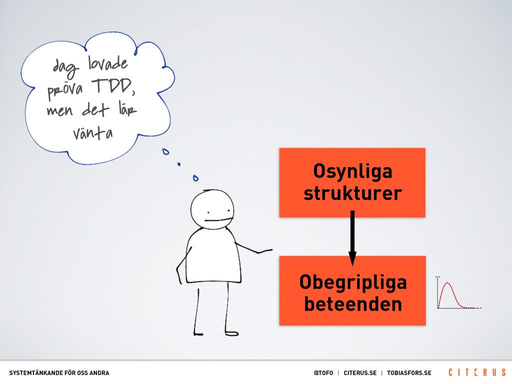 Osynliga strukturer Obegripliga beteenden SYSTE...