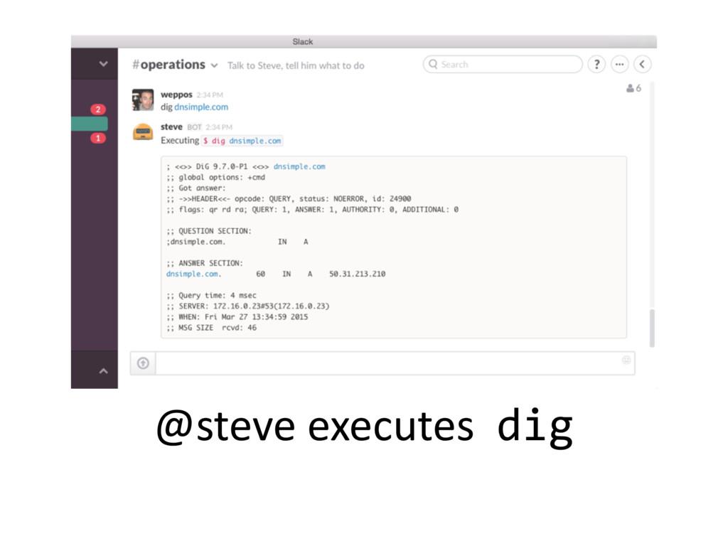 @steve executes dig