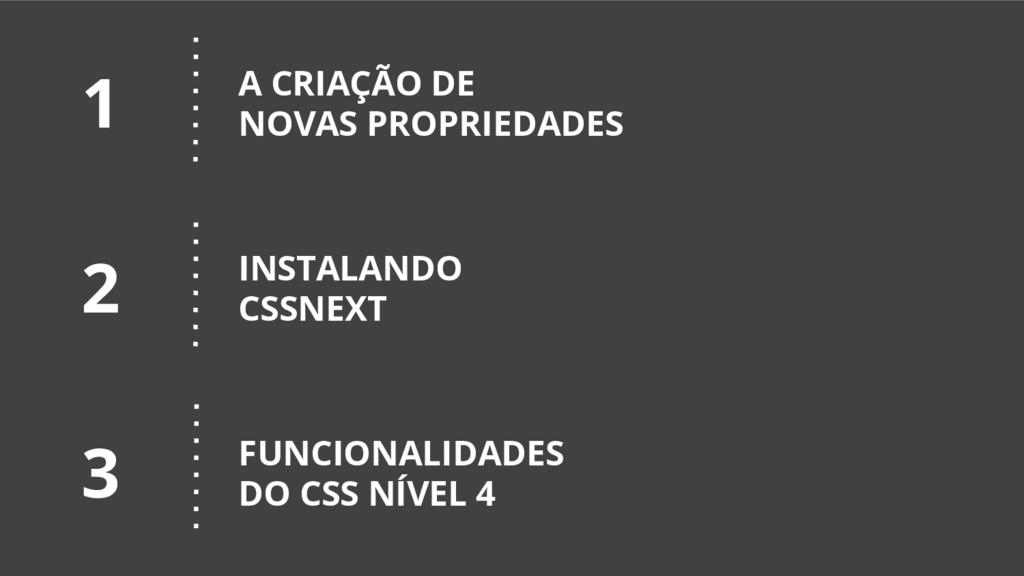 A CRIAÇÃO DE NOVAS PROPRIEDADES INSTALANDO CSSN...