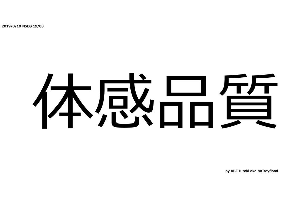 2019/8/10 NSEG 19/08 体感品質 by ABE Hiroki aka hAT...