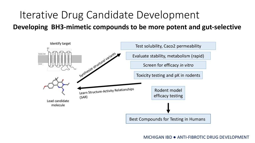 Iterative Drug Candidate Development Lead candi...