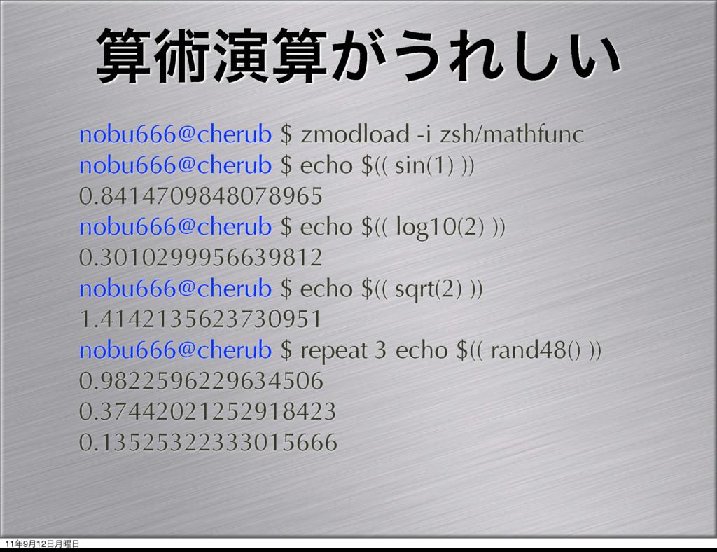 ज़ԋ͕͏Ε͍͠ nobu666@cherub $ zmodload -i zsh/math...