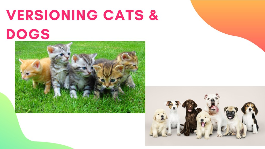 VERSIONING CATS & DOGS