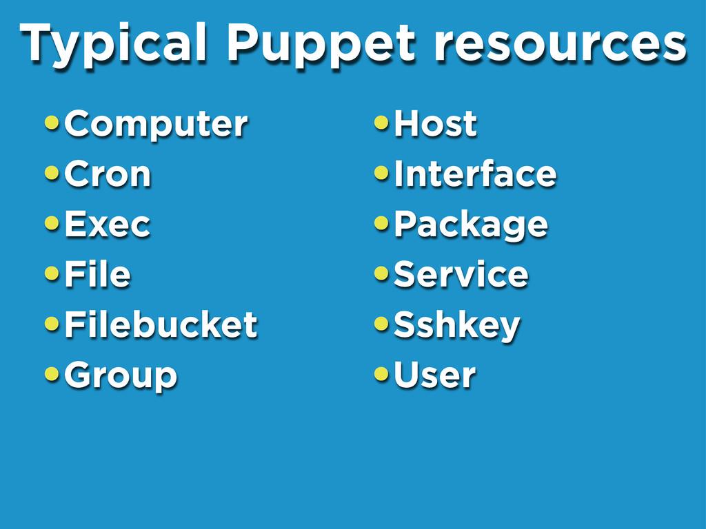 •Computer •Cron •Exec •File •Filebucket •Group ...