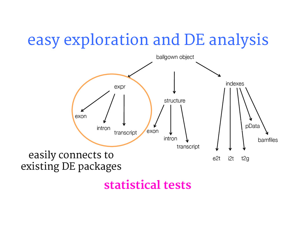 ballgown object data structure indexes exon...