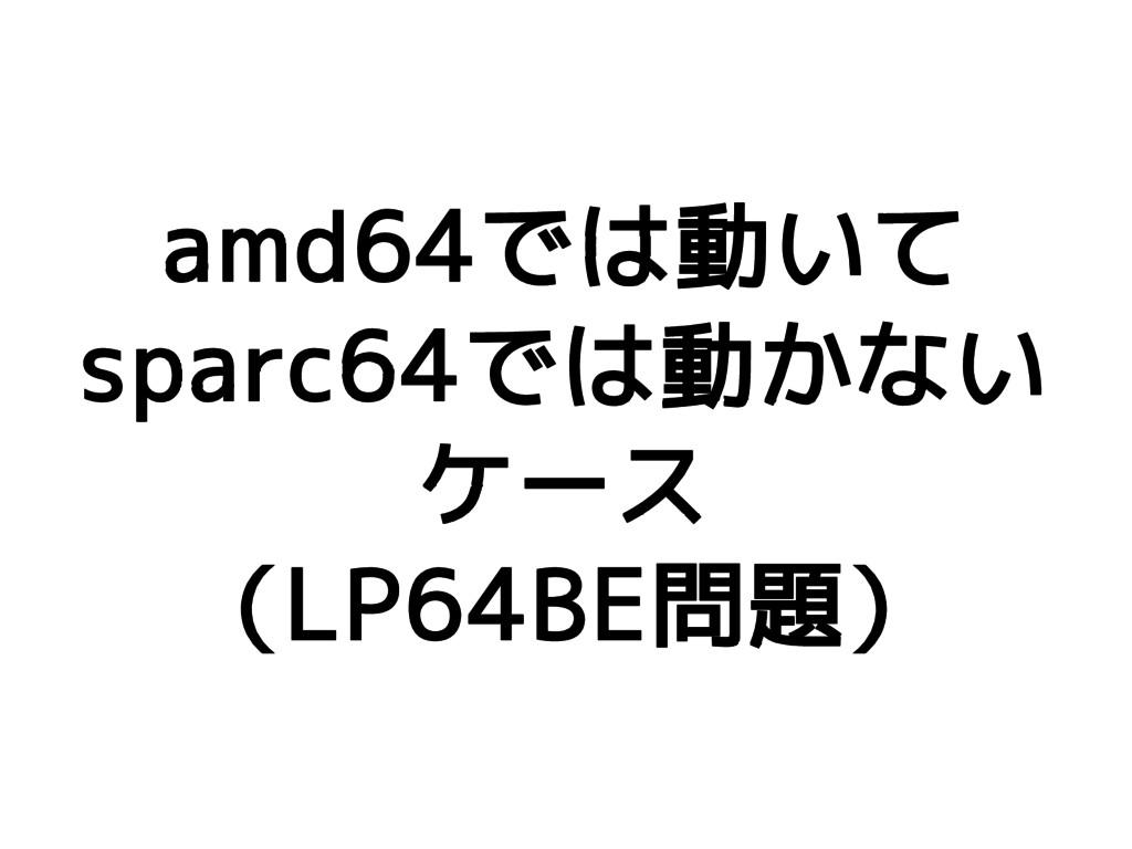 amd64では動いて sparc64では動かない ケース (LP64BE問題)